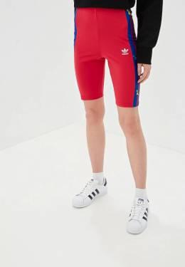 Шорты спортивные Adidas Originals ED4767