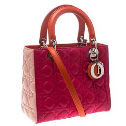 Dior Multicolor Leather Medium Lady Dior Tote 151061