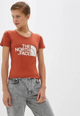 Футболка The North Face T0C256BDN