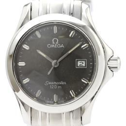 Omega Gray Stainless Steel Seamaster 120M Women's Wristwatch 28 MM 229670