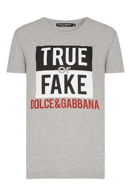 Серая футболка с принтом Dolce&Gabbana 599157107