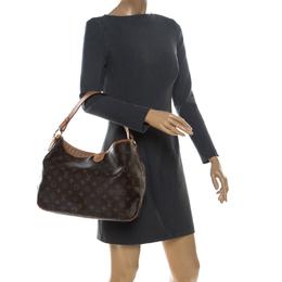 Louis Vuitton Monogram Canvas Delightful PM Bag 237216