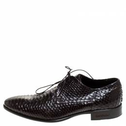 Baldinini Brown Python Leather Oxfords Size 39 239951