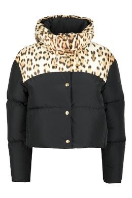 Черная куртка с леопардовым принтом Roberto Cavalli 314163482