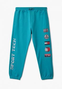 Брюки спортивные Tommy Jeans DM0DM07627