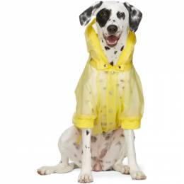 Moncler Genius Yellow Poldo Dog Couture Edition Waterproof Coat 00882 - 00 - 549W1