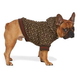 Burberry Brown Monogram Dog Hoodie 8022218