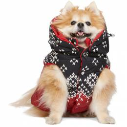 Moncler Genius Reversible Red Poldo Dog Couture Edition Sweater Knit Jacket 00881 - 00 - 539Q6
